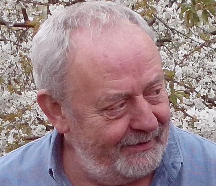 Frans Van Gils