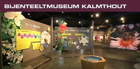 foto van Kalmthout.be